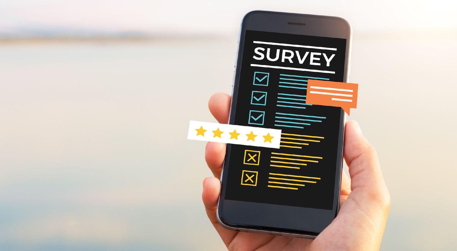 utilizing Social-Media and Micro-Surveys for mvp validation